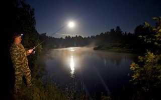 Ловля карася ночью