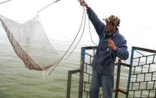 Паук рыболовный своими руками