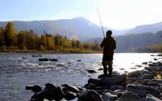 Рыбалка на катуни в июле