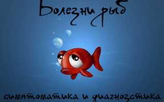 Болезни рыб и их лечение