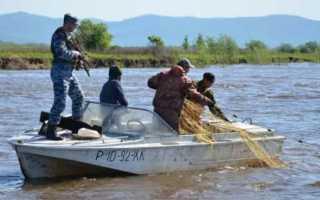 Браконьерские способы ловли рыбы