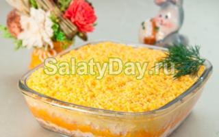 Салат мимоза рецепт с сардиной и твердым сыром
