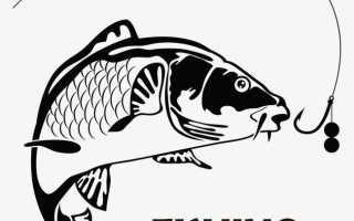 Клев рыбы в краматорске