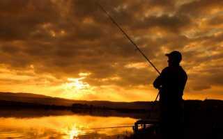 Кормушка для ловли леща на течении