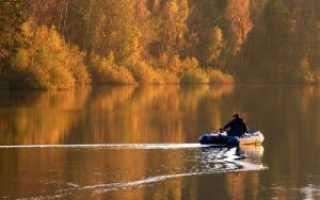 Какая клюет рыба в октябре
