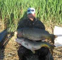 Каспийское море рыбалка