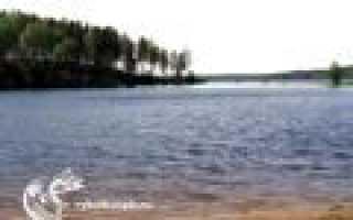 Большое симагинское озеро рыбалка