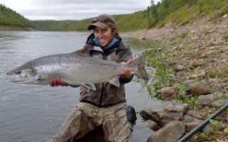 Рыбалка на кольском полуострове