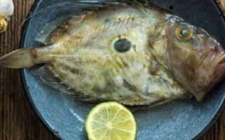 Рыба дори где водится из какой страны