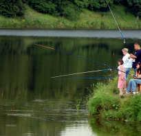 Зимняя рыбалка во владимире