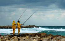 При каком ветре лучше клюет рыба летом
