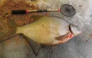 Коромысло для зимней рыбалки