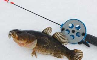 Рыбалка зимой на ротана