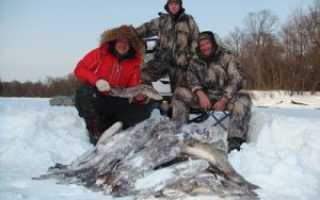 Рыбалка в западной сибири
