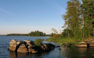 Рыбалка на реке вуокса