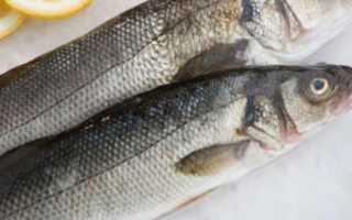 Ледяная рыба в духовке