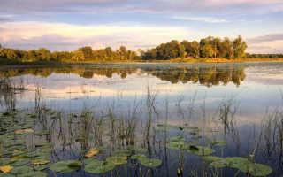 Рыбалка на озере хепоярви