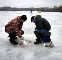 Белое озеро рыбалка