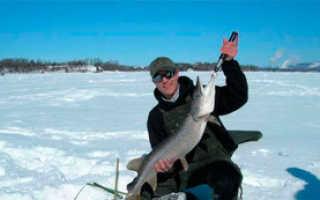 Рыбалка в башкирии зимой