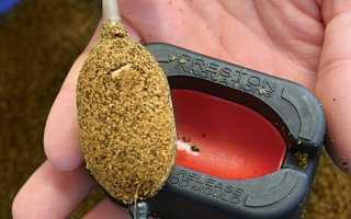 Как запарить комбикорм для рыбалки