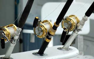 Спиннинг для морской рыбалки
