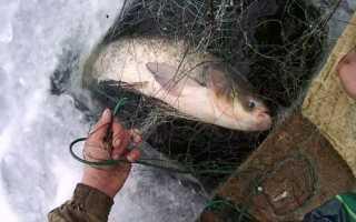 Ловля рыбы зимой сетями