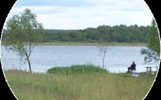 Серебряные пруды рыбалка