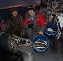 Ночная рыбалка на омуля