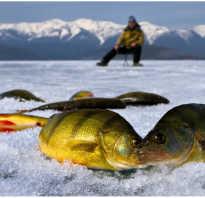 Зимняя рыбалка карелия