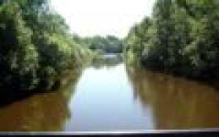 Река сестра рыбалка