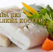 Самая костлявая рыба