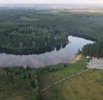 Озеро боровое рыбалка