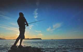 Прикормка для рыбы в домашних условиях