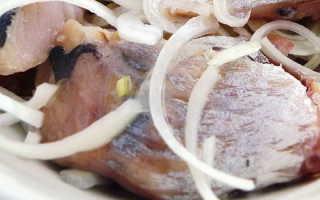 Как солить речную рыбу в домашних условиях