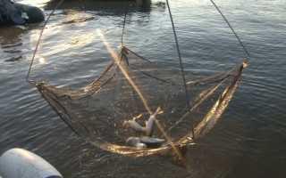 Рыболовный экран своими руками