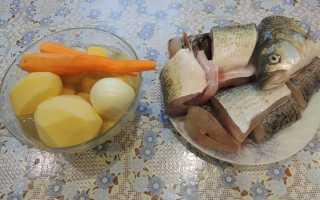 Как приготовить щуку в духовке с майонезом
