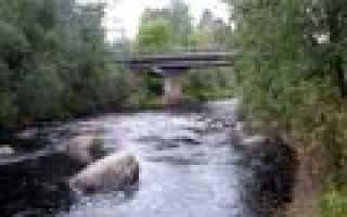 Рыбалка на реке мга
