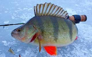 Как сделать балду для рыбалки