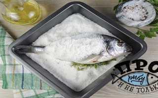 Рыба в соляной шубе