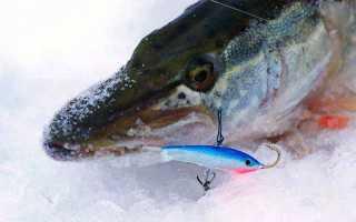 Рыбалка зимняя на щуку