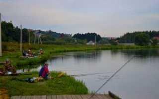 Река гжелка рыбалка