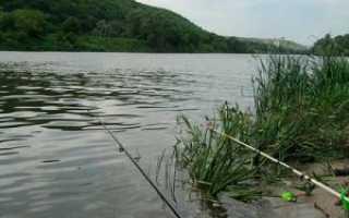 Рыбалка в мае на дону
